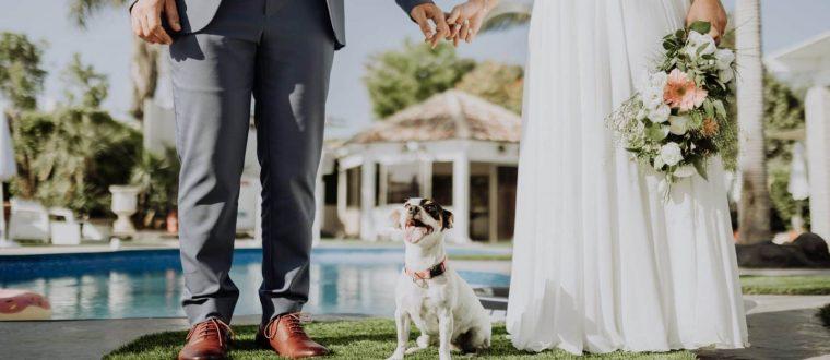 ברכה לבן / בת הזוג בחתונה – איך תעשו את זה נכון?