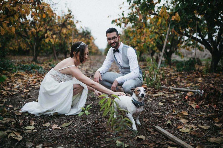 חתונה במרכז- אולם אירועים גרייס